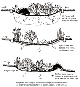types of rain gardens