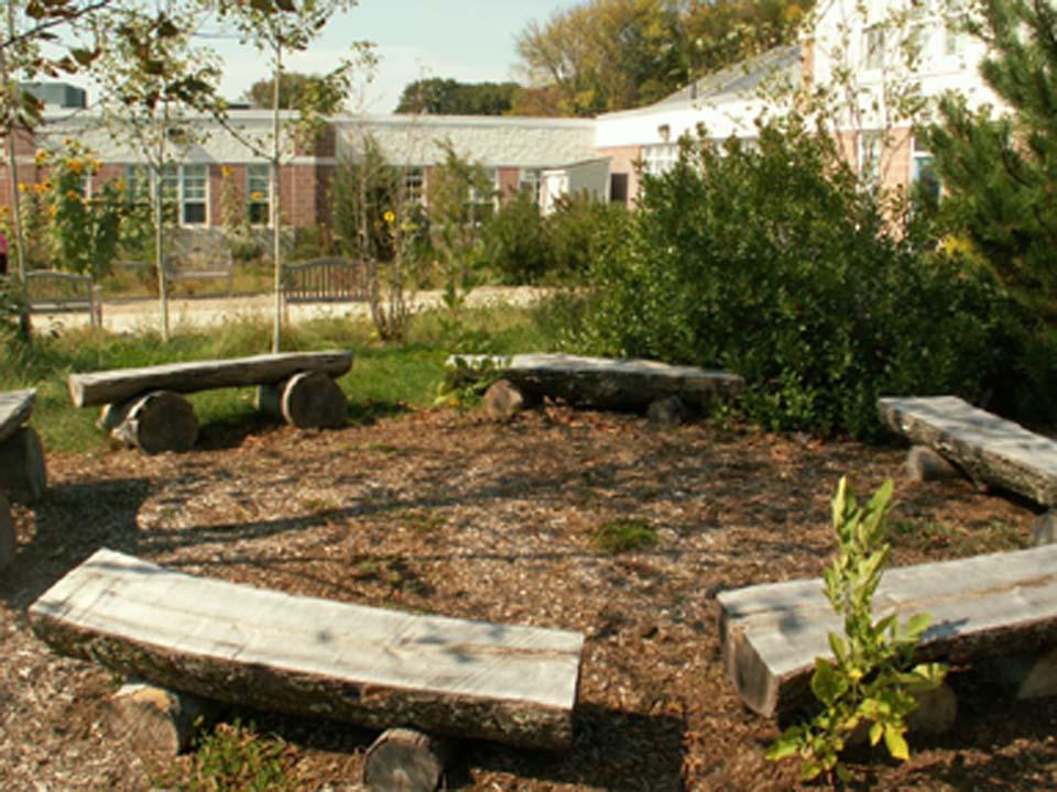 Syh Ideas Matilija Schoolyard Habitat Syh